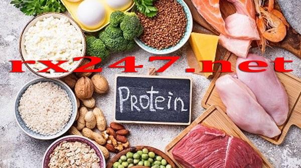 Makanan Untuk Membentuk Otot